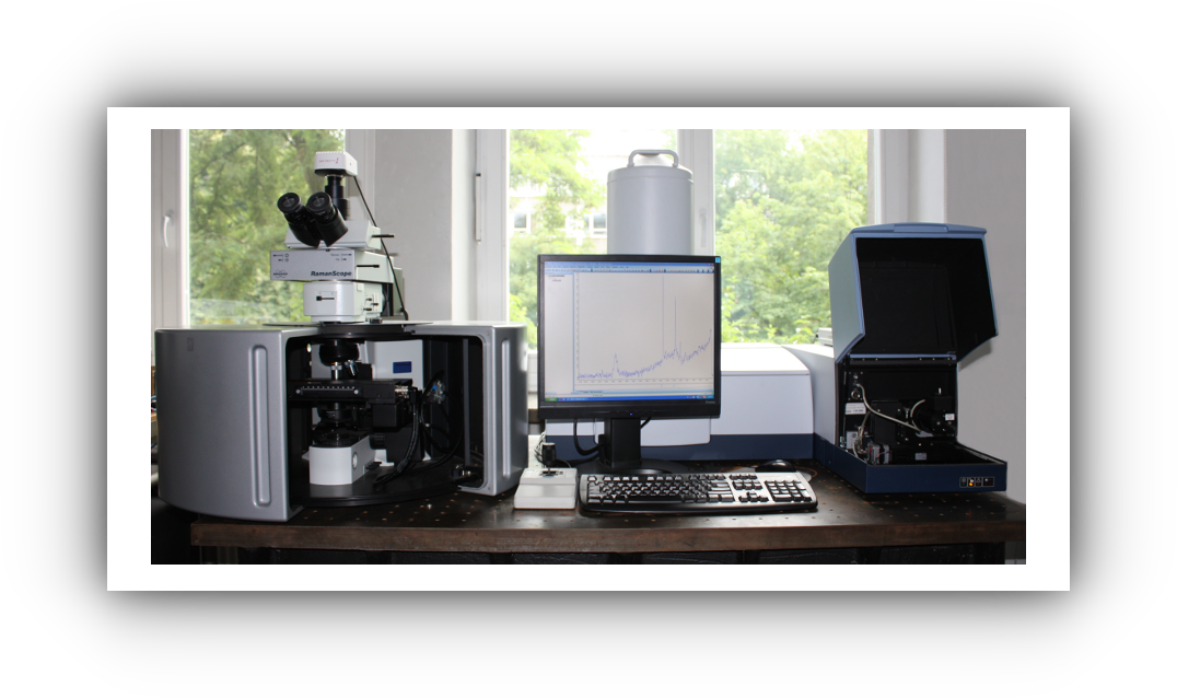 MultiRAM FT-Raman Bruker spectrometer