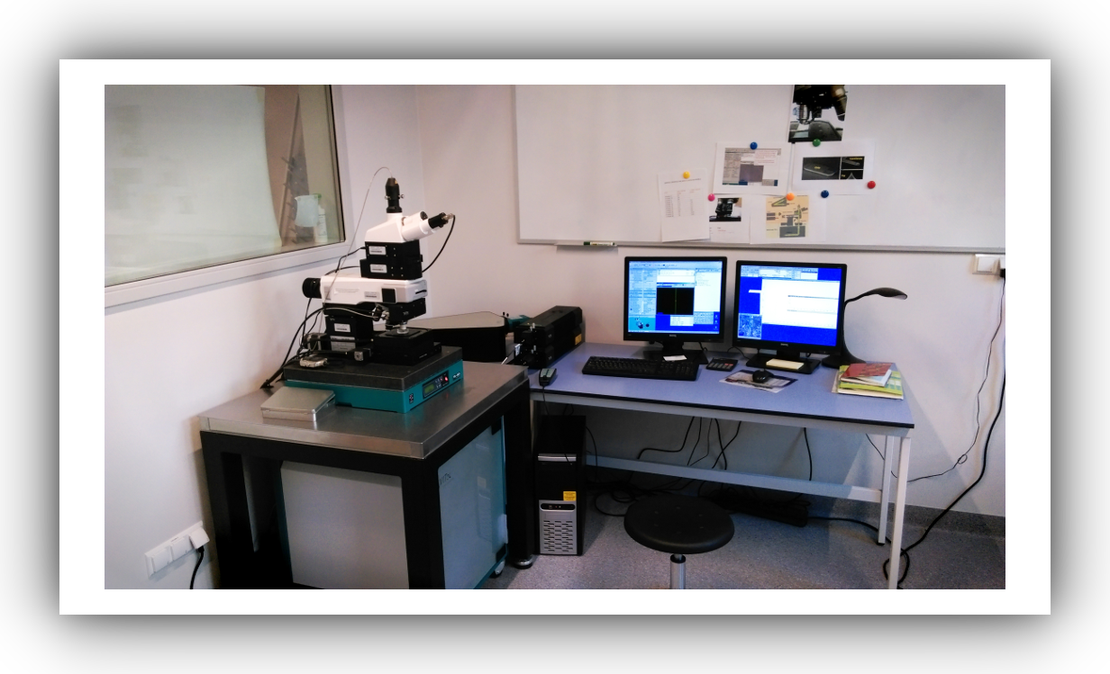 Confocal Raman Imaging WITec Alpha 300 coupled with atomic force microscope AFM
